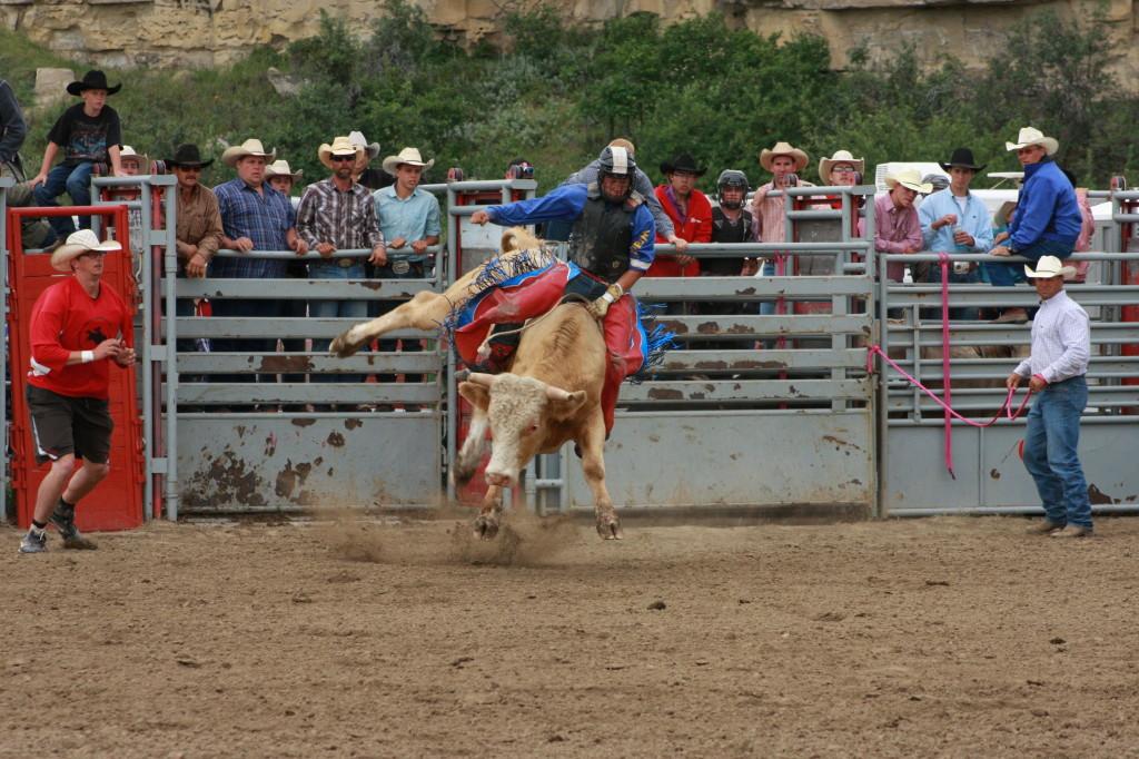 Novice Bull Riding